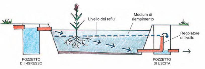 fitodepurazione a flusso orizzontale